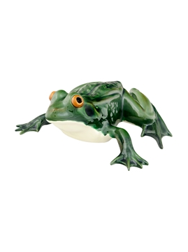 Picture of Frogs - Large Frog Laying Down