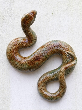 Picture of Large Snake