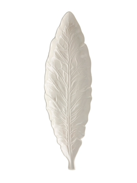 Picture of Narrow Leaf 40 Beige