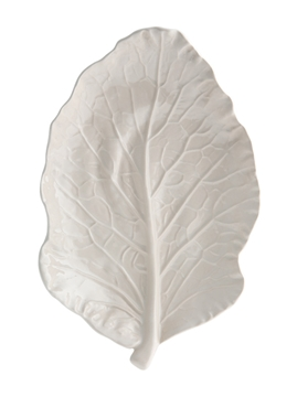 Picture of Cabbage - Leaf 25 Beige