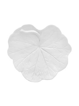 Picture of Geranium - Leaf 17 White