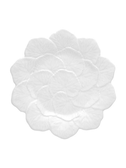 Picture of Geranium - Fruit Plate 22 White