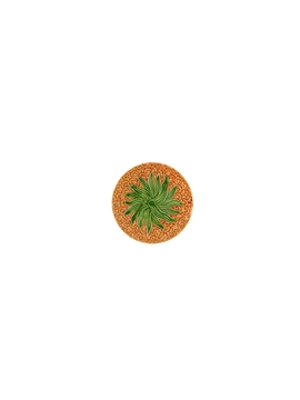 Picture of Pineapple - Fruit Plate