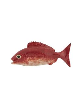 Picture of Fish andShellfish - Blackspot Seabream