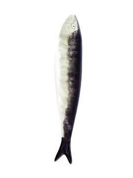 Picture of Sardine - Sardine Natural